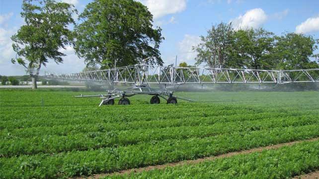 Découvrez sans attendre toute l'expertise Verhaeghe Irrigation !