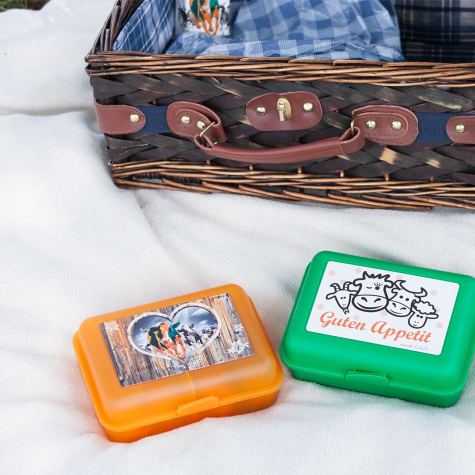 Lunch box pour enfant avec séparateur
